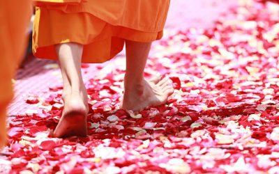 Quiz n°3 : Conseils pour votre voyage en Thaïlande